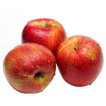 天山冰糖心苹果