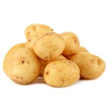 荷兰土豆 10斤装