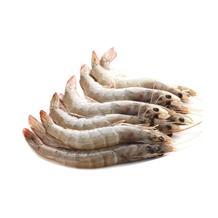 白虾中50-60 500g装