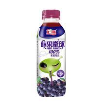 汇源萌果星球紫葡萄汁336ml