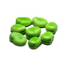 蚕豆(精品500)