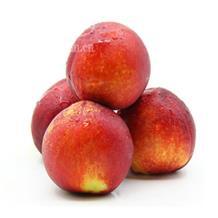 黃油桃(精品)