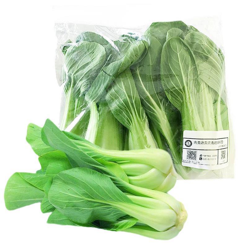 小油菜(精品400)