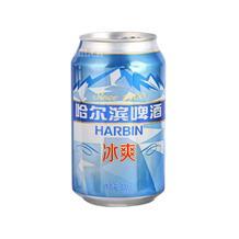 哈尔滨冰爽听啤330ml*6