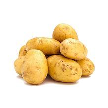新土豆(精品)